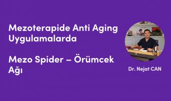 Mezo Spider – Örümcek Ağı